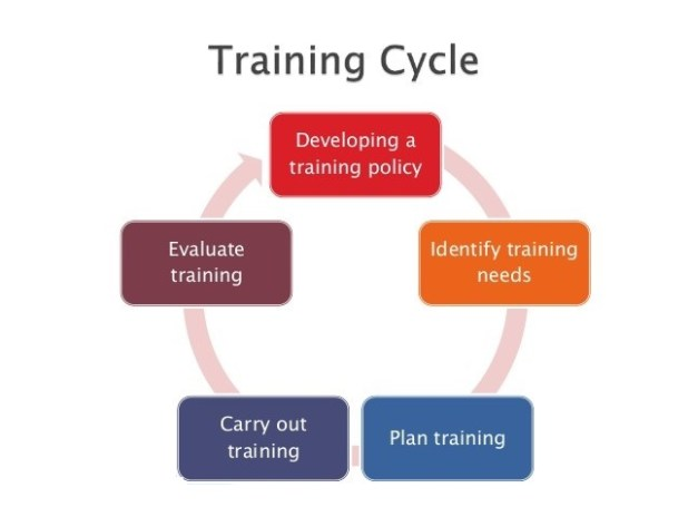 Training and Development Process of Tesco