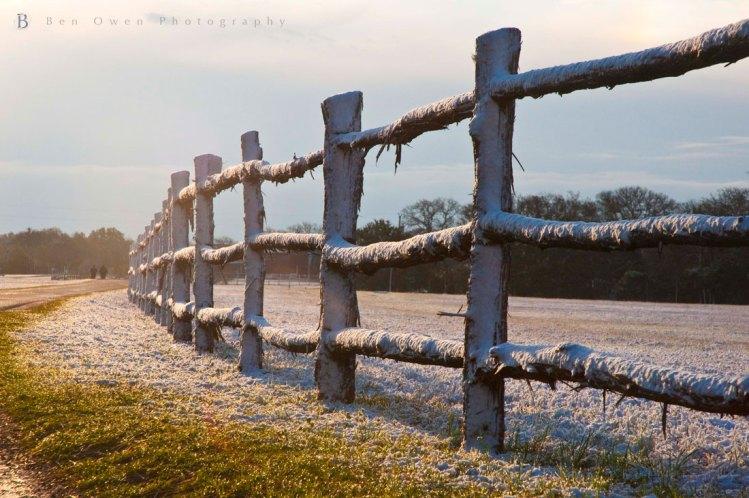 Frosty-Walk