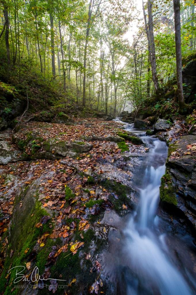 The Silk Falls