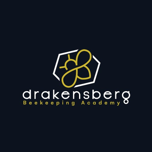 beekeeping professional logo design in Cape Town