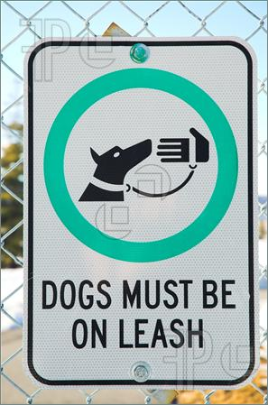 Social Stories for Neurotypical Adults #27 :  No dogs allowed (3/3)