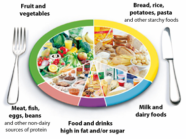 The NHS Eatwell plate