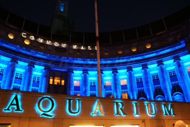 Aquarium & County Hall