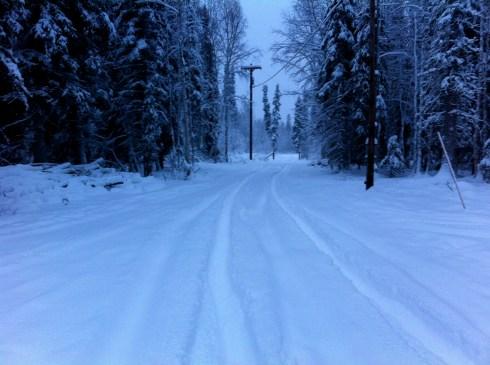 Long Unplowed Drive
