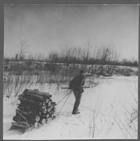 Hauling firewood