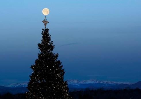 Moon over a Christmas tree