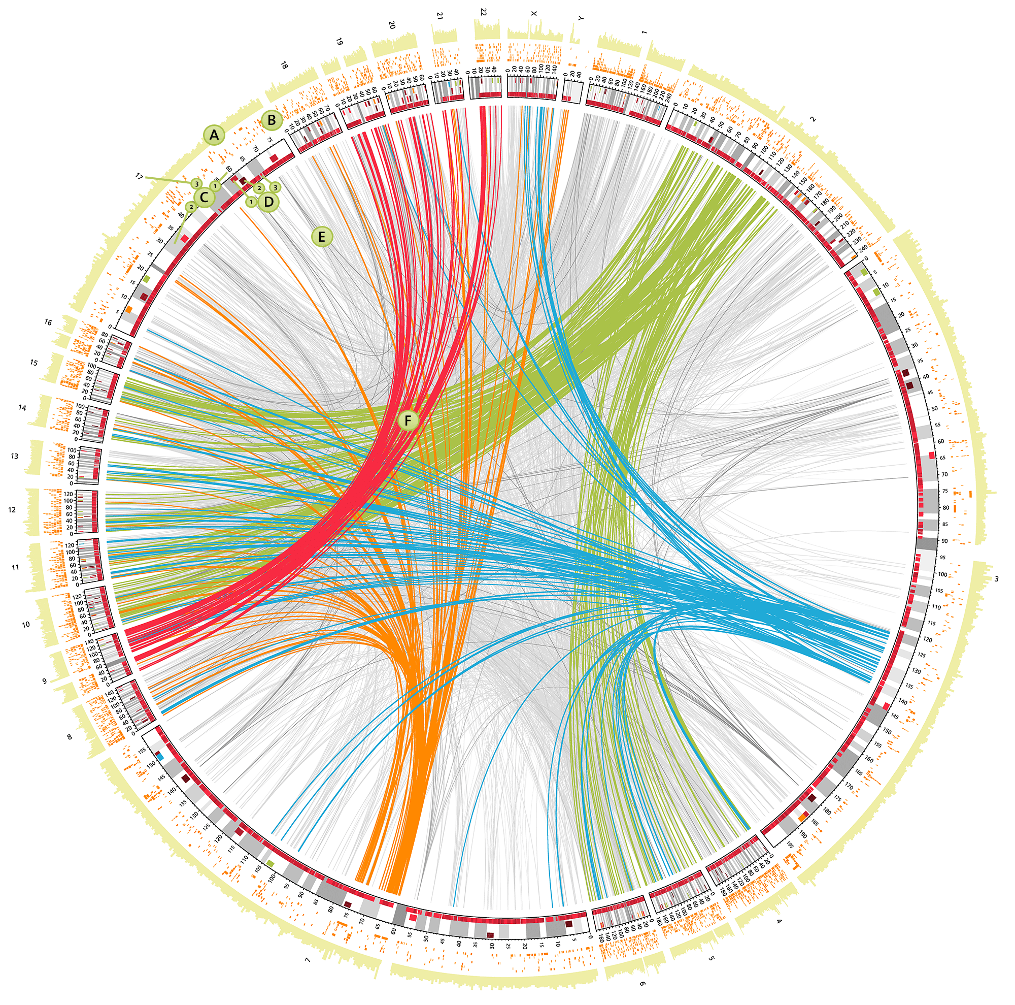 Genome Viewer Many Loci Overview