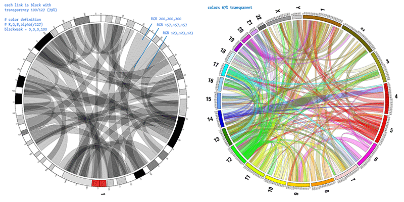 Roadmap CIRCOS Circular Genome Data Visualization