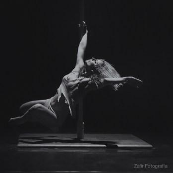 Vane Lunática (Pole dance).