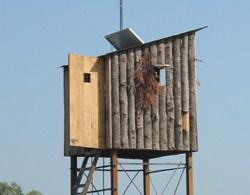 Remote Observation Station