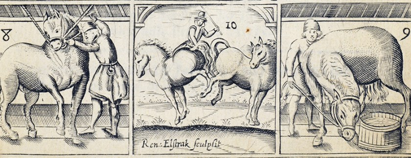 Three Illustrations of people working with horses.