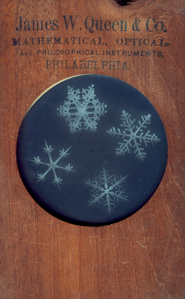 a glass slide showing four snowflakes in a wood frame.