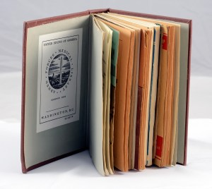 Several pamphlets bound together in a library binding.