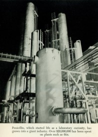 An industrial plant with enormous tanks, pipes, ladders and catwalks.