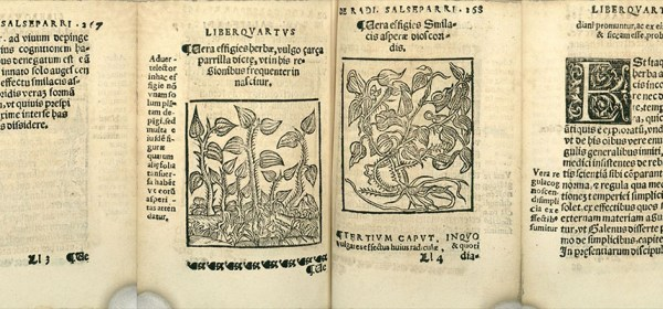 four pages from an early printed book with woodcuts.