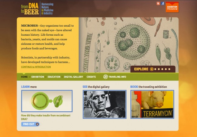 A screenshot of the homepage of the From DNA to Beer website.