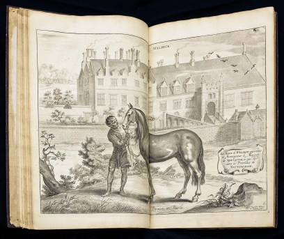 A double page spread detailed copperplate engraving of a man holding a bridled horse in front of a large masonry building.