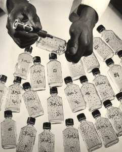 A group of glass bottles used in a lab. Hands are seen using a marker to mark of the bottles.