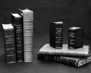 Photograph of seven rebound books.