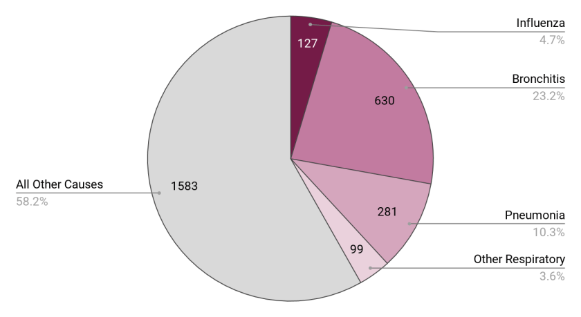 A pie chart showing a little more than a third of deaths attributed to various respriratory diseases, with influenza at 4.7% and all other causes at 58.2%
