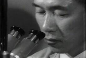 An asian man looks into a microscope.