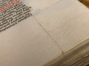 The parchment page is textured with small dots from the hair folicals of the animal.