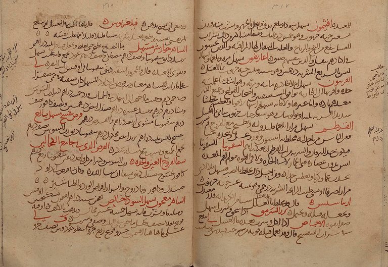 A bound Arabic manuscript in black, brown and red ink, with notes in the margin.