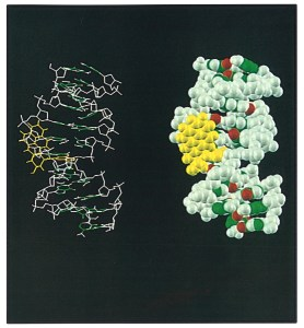 Two molecular structures side by side.