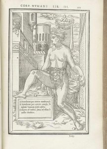 A labeled anatomical figure of a preganant woman seated outside a castle with dissection revealing full term fetus and umbilical.
