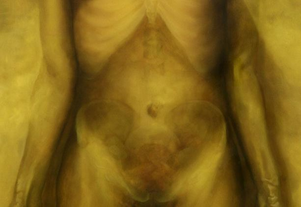 A painting of a female abdomen with bones visible as thogh the skin were translucent.