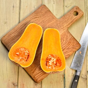 butternut squash harvested