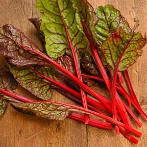 rhubarb-chard-harvested