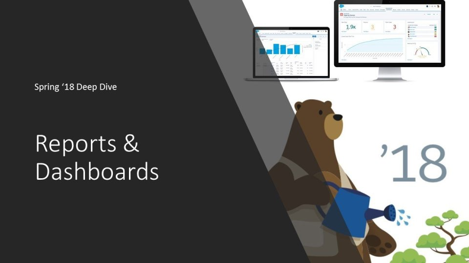 Reports and Dashboards within Lightning Experience