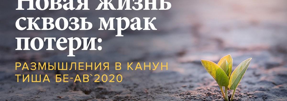 Новая жизнь сквозь мрак потери: размышления в канун Тиша бе-Ав`2020