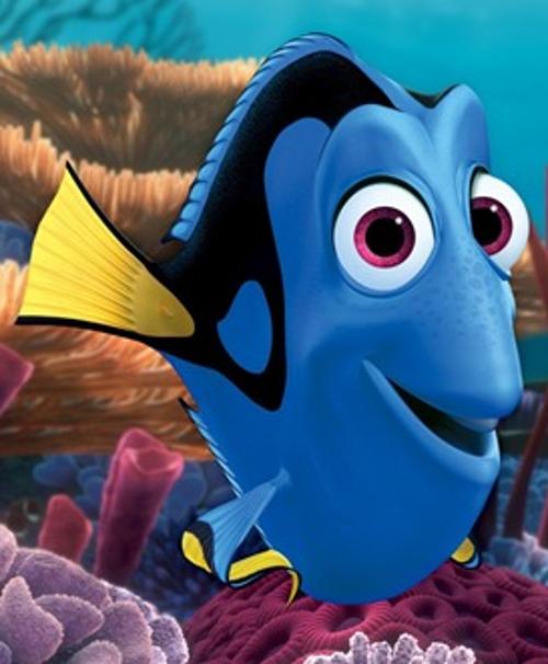 Le Monde De Nemo Personnages : monde, personnages, Citation, MONDE, NÉMO, (film/série)