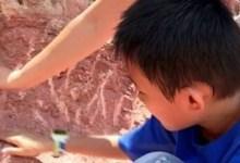 Photo of Niño chino pone en jaque a los arqueólogos encontrando huevos de dinosaurios de hace 65 millones de años
