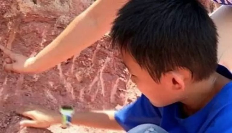 niño halla huevos de dinosaurio de 65 millones