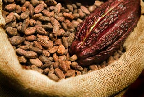Cocoa prices remain at GH¢7,600 per tonne