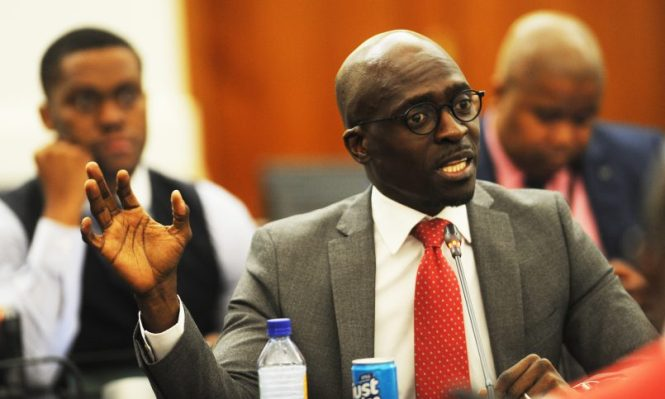 Minister of home affairs Malusi Gigaba. Picture: ANA