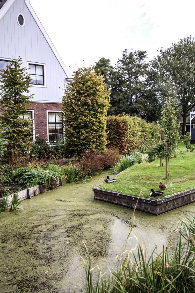 Sloot-Nederland-Broek-in-Waterland