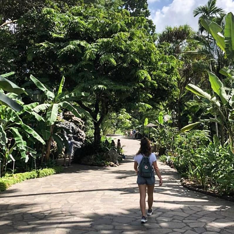 Singapore Park wandeling