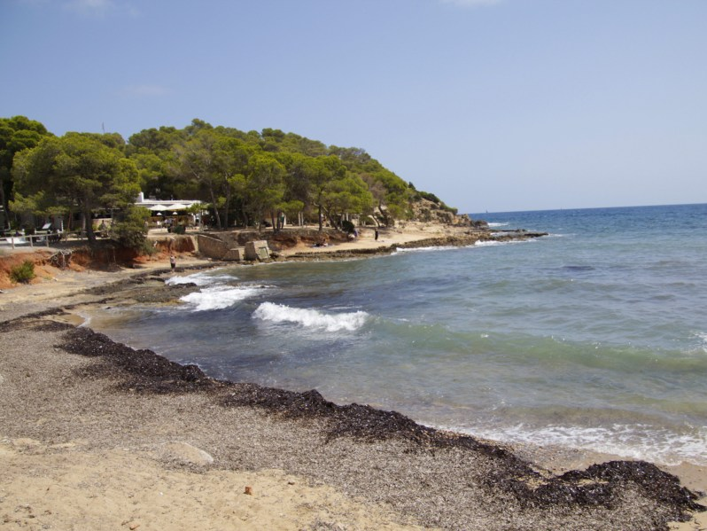 Citizen-of-Ibiza-Santa-Eulalia