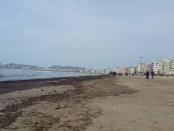 """Leshterikët """"mbretërit"""" e bregdetit të Durrësit. Citizens Channel"""