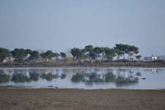 Laguna në Sektorin Rinia. Foto: Amarildo Topi