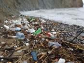 Plazhi i Porto-Romanos i ndotur nga mbetjet. Foto: Geri Emiri / Citizens Channel