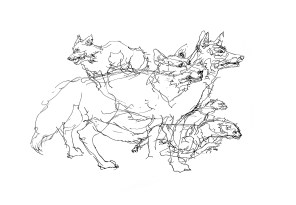 taxidermy-mammals_step-by-step-4
