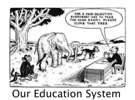 Education system and animals