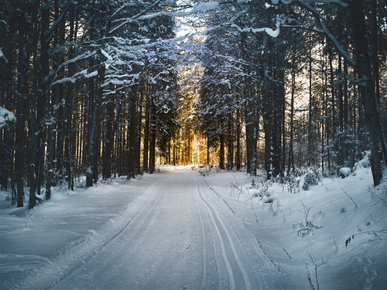 5 Moments To Use Mindfulness During The Holiday Season