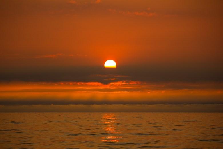 July CItrus and Sun Moments, Sunrise