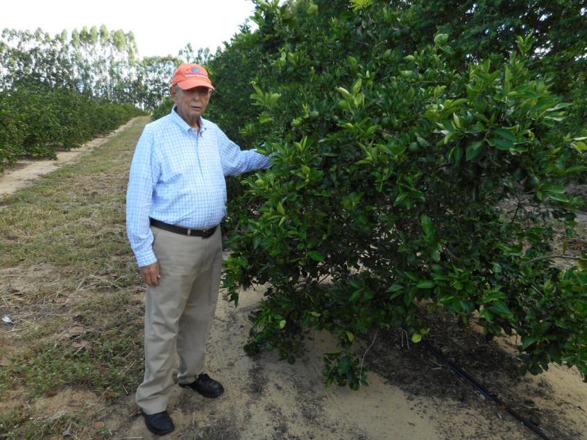 double citrus production